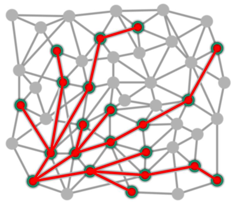 Gitternetz zur Verdeutlichung des exponentiellen Wachstums